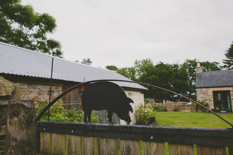 Ryehill Farm garden